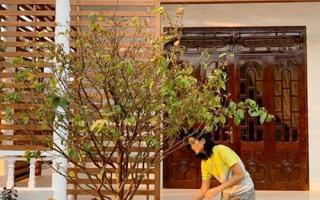H'Hen Niê sửa nhà cho bố mẹ